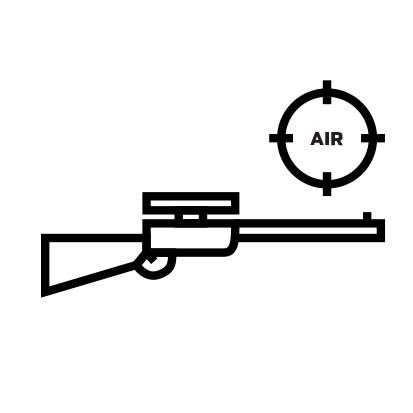 31. Rifle Air