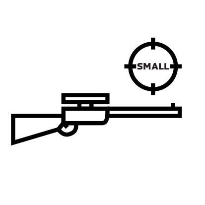 33. Rifle Small Bore
